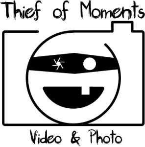 LOGO-HOME WEB- THIEF OF MOMENTS